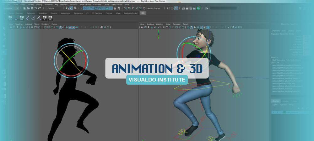VisualDo Institute - animation.jpg